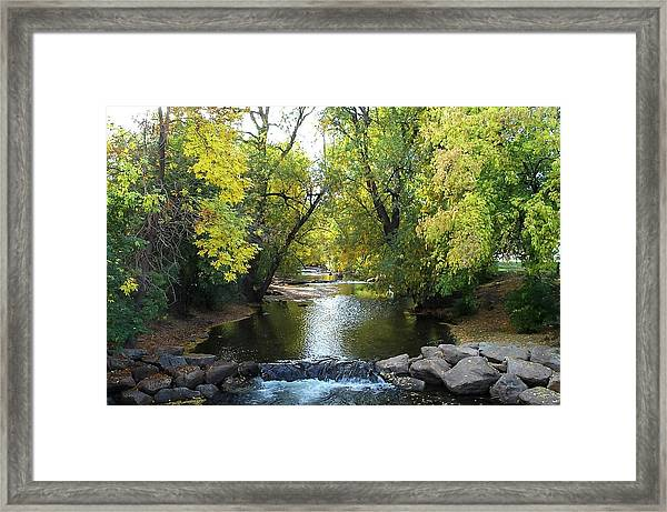 Boulder Creek Tumbling Through Early Fall Foliage Framed Print