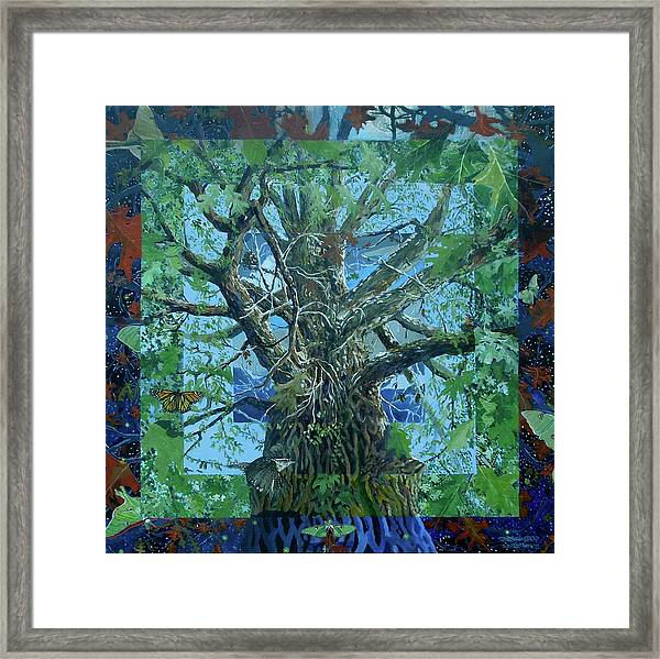 Boundary Series Xvi Framed Print