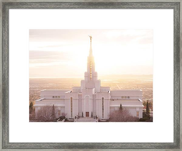 Bountiful Golden Glow Framed Print