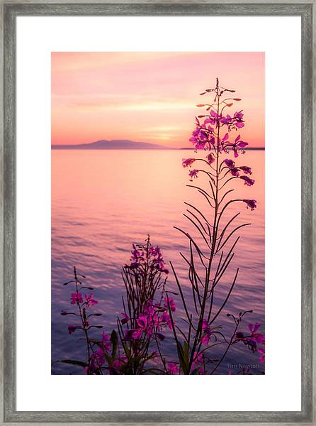 Bouquet For A Sleeping Lady Framed Print