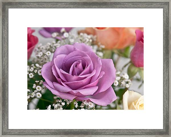 Bouquet Of Roses Framed Print by Jeff Abrahamson