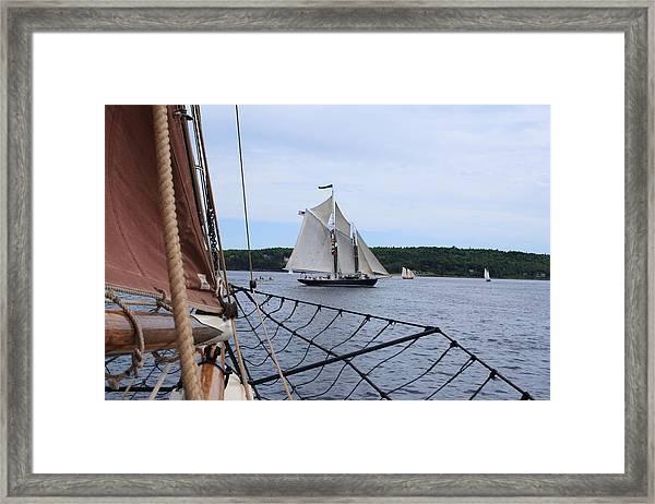 Bowditch Framed Print