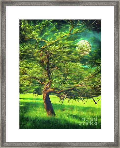 Bowing To The Moon Framed Print