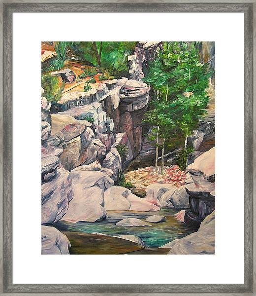 Box Canyon Framed Print by Theresa Higby