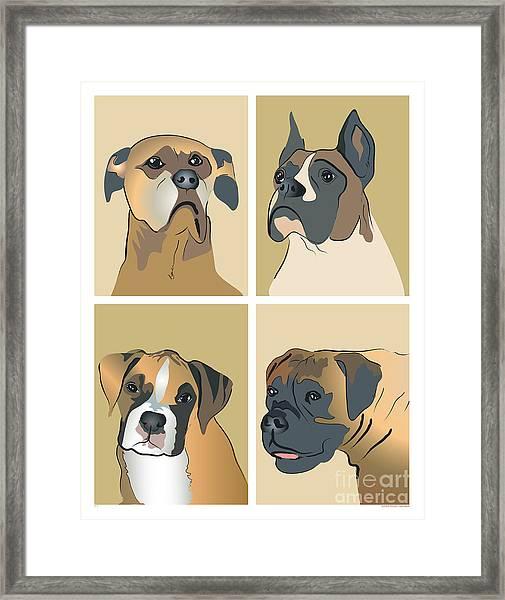 Boxer Dogs 4 Up Framed Print