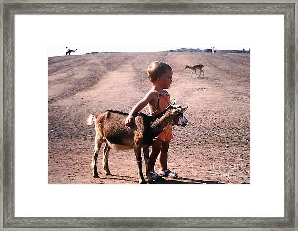 Boy And A Goat Framed Print