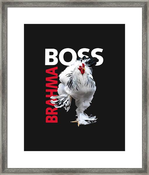 Brahma Boss II T-shirt Print Framed Print