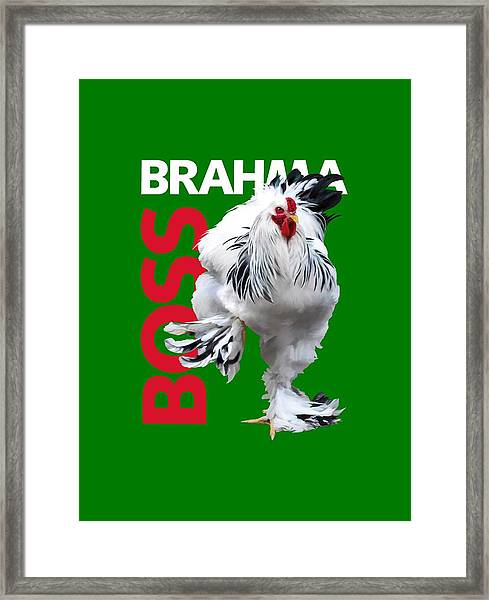 Brahma Boss T-shirt Print Framed Print