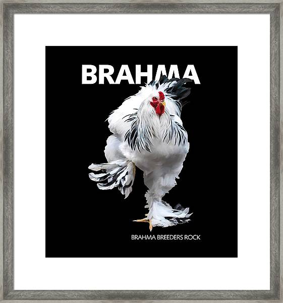Brahma Breeders Rock T-shirt Print Framed Print
