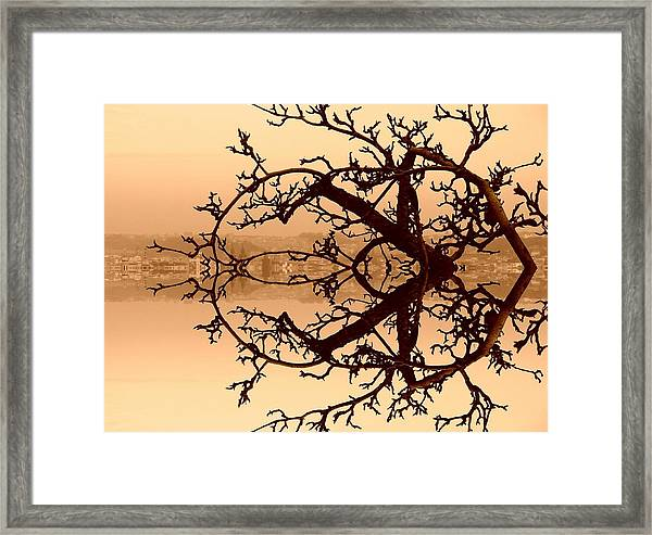Branches In Suspension Framed Print