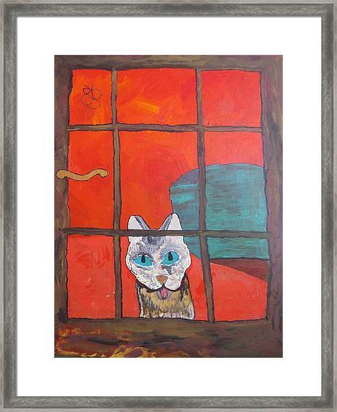 Break And Enter Cat Framed Print