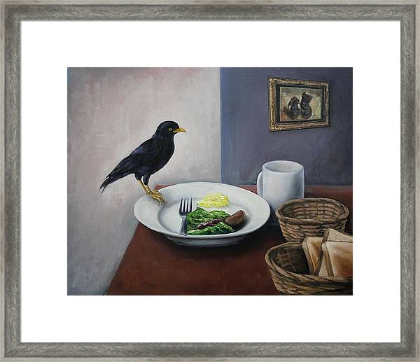 Breakfast At The Bird Park Framed Print by Michelle Barone