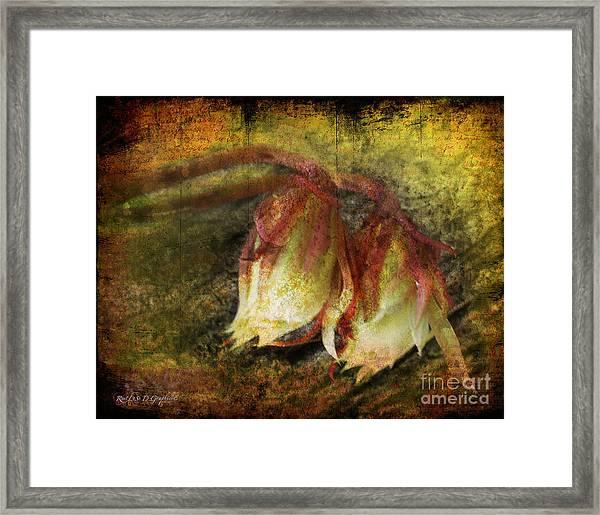 Breath Of Life Framed Print