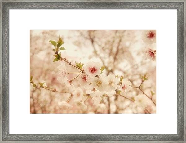 Breathe - Holmdel Park Framed Print