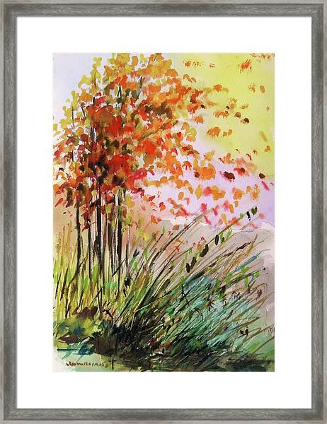 Breezes Framed Print by John Williams