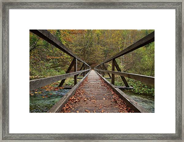 Bridge Framed Print