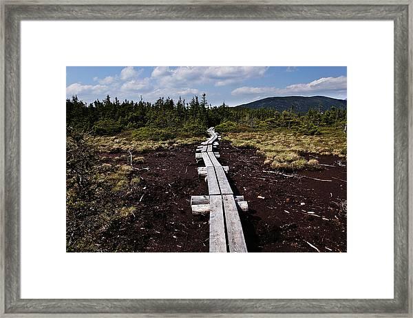 Bridge To Mizpah Framed Print
