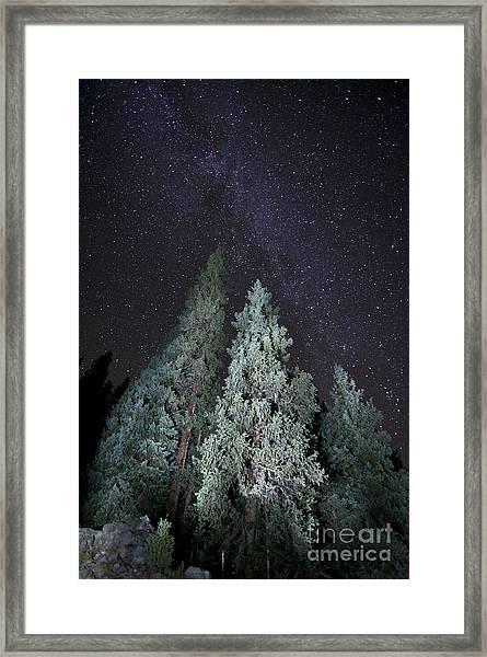 Bright Night Framed Print