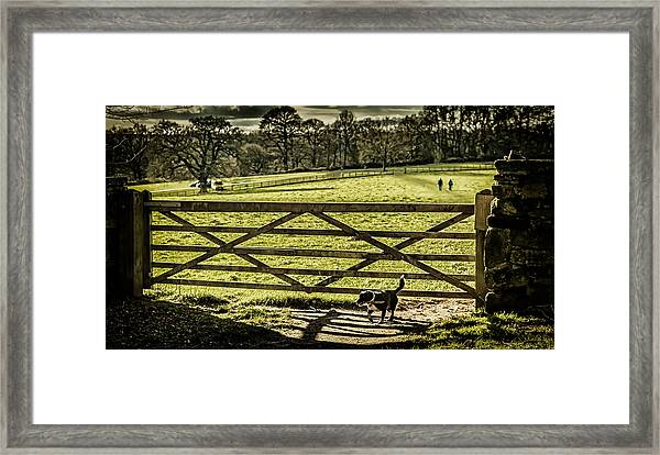 Framed Print featuring the photograph Bringing It Back by Nick Bywater