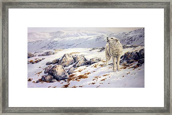 Broken Silence Framed Print by Kathleen V  Butts