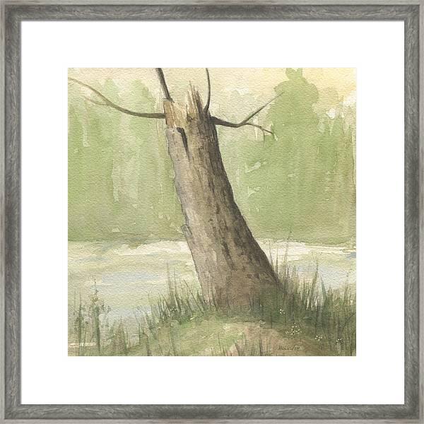 Broken Tree Framed Print