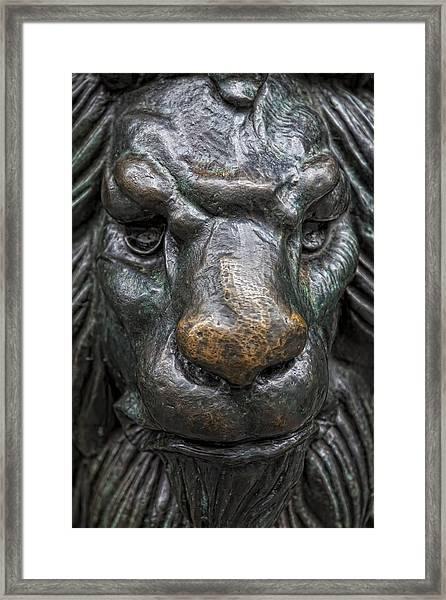 Bronze Lion Framed Print by Robert Ullmann