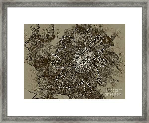 Bronzed Out Sunflower Framed Print