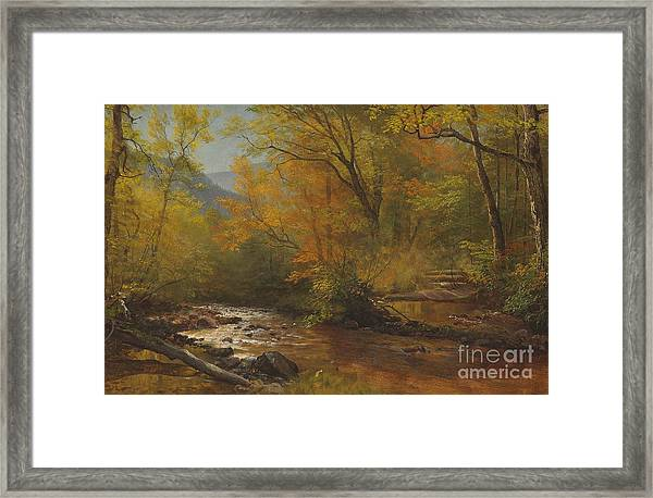 Brook In Woods Framed Print