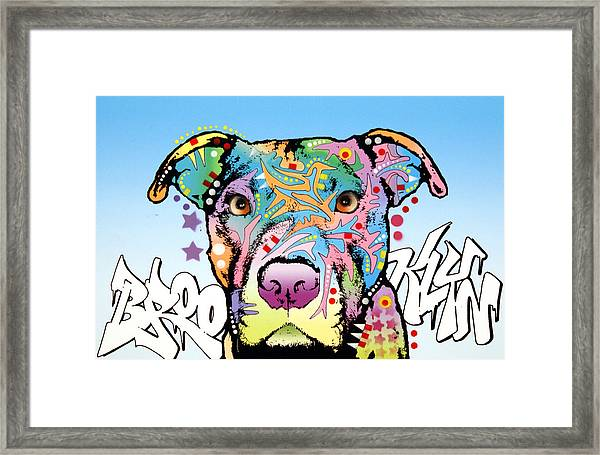 Brooklyn Pit Bull 2 Framed Print by Dean Russo Art