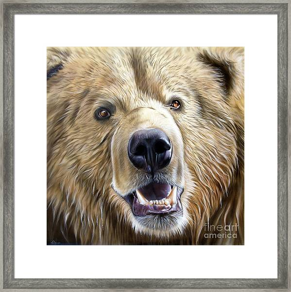 Brown Bear Framed Print