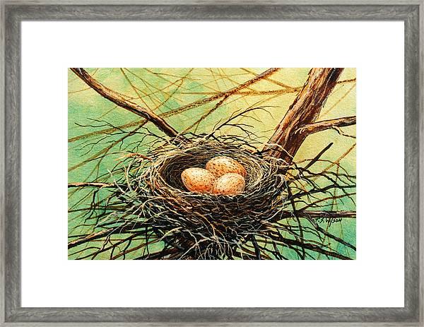 Brown Speckled Eggs Framed Print