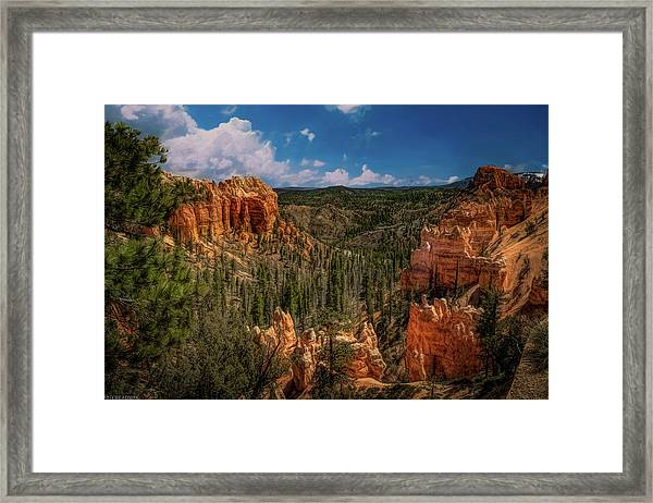 Bryce Canyon From The Top Framed Print
