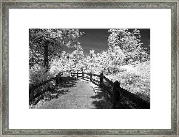 Bryce Canyon Trail Framed Print by Mike Irwin