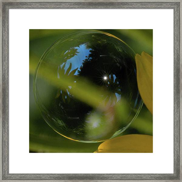 Bubble In The Garden Framed Print