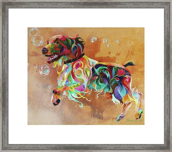Bubbles  English Springer Framed Print
