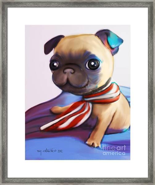 Buddy The Pug Framed Print