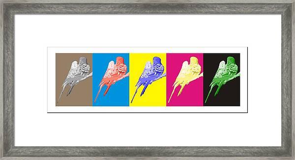 Pop Art Parakeets Framed Print