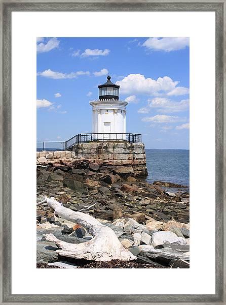Bug Lighthouse Framed Print