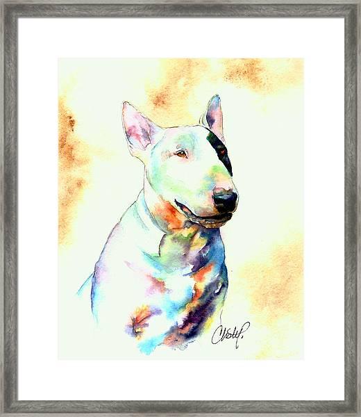 Bull Terrier Dog Portrait Framed Print