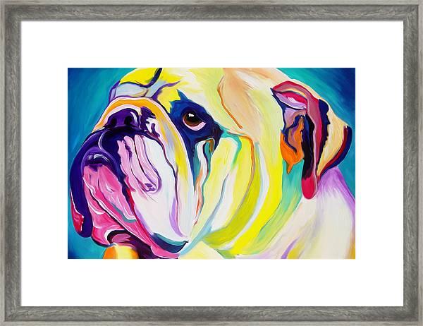 Bulldog - Bully Framed Print