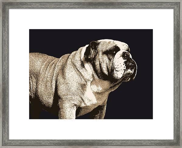 Bulldog Spirit Framed Print