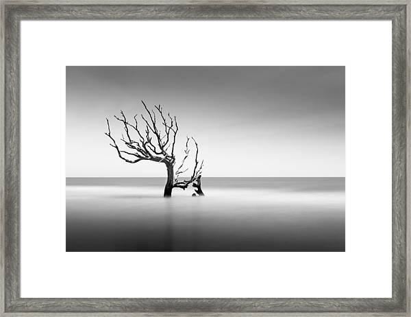 Boneyard Beach  Xiv Framed Print