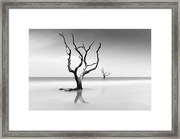 Boneyard Beach Xv Framed Print