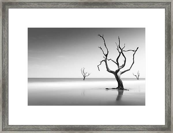 Boneyard Beach Iv Framed Print