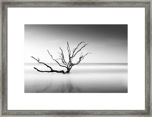 Boneyard Beach Vi Framed Print