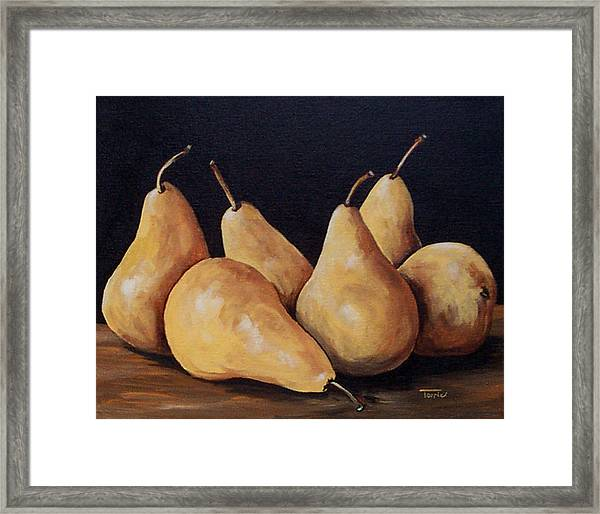 Bunch Of Bosc Pears  Framed Print