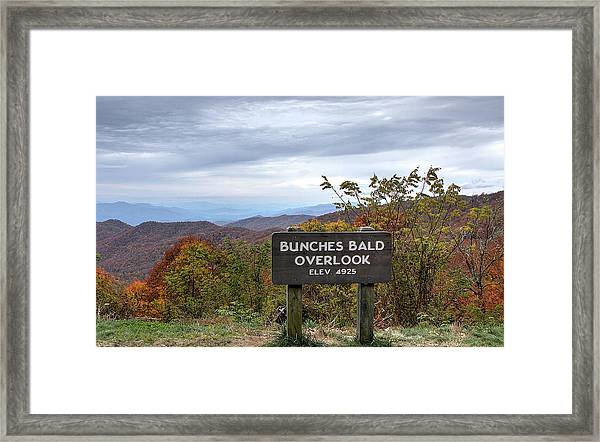 Bunches Bald Framed Print