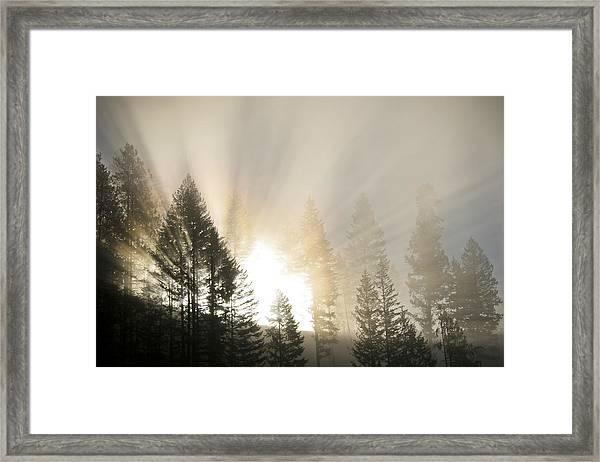 Burning Through The Fog Framed Print