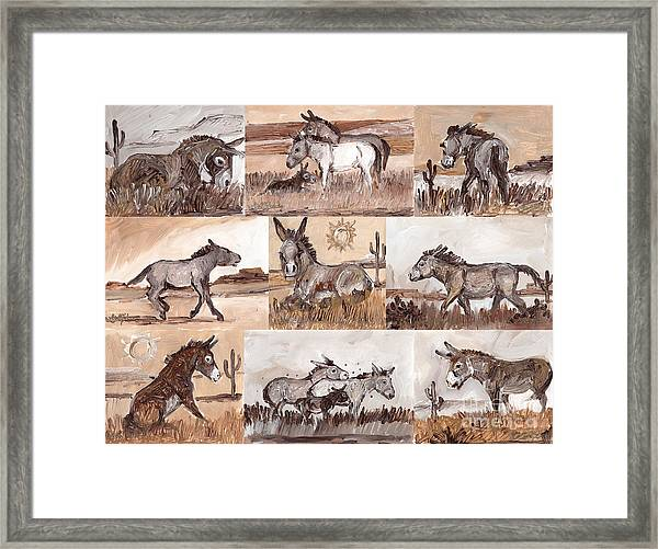 Burros Of The South West Sampler Framed Print