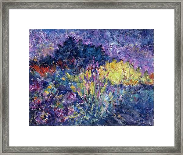 Burst Of Color-last Night In Monets Gardens Framed Print